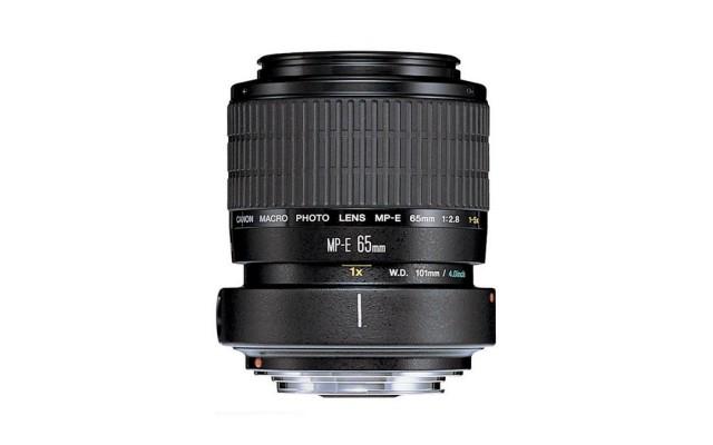 Canon MP-E 65mm f/2.8 1-5 x Makro